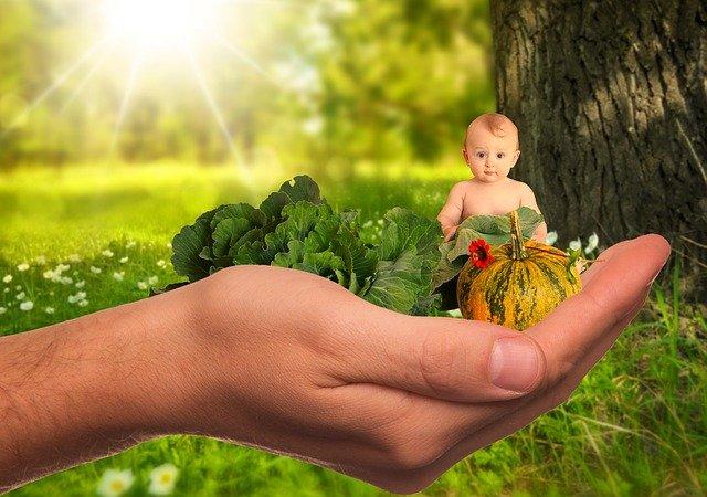 zdraví pro děti