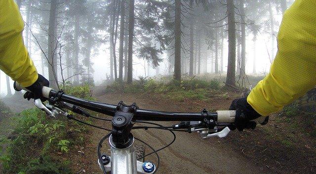 Cyklistika v lese